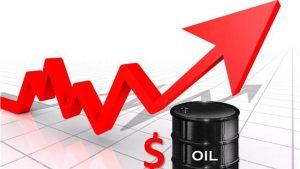 Crude oil rebounds